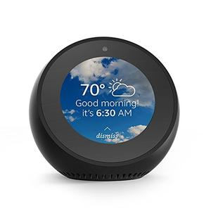 Amazon Echo Spot (VN94DQ) Default Password & Login, Manuals and