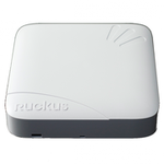 The Ruckus Wireless ZoneFlex 7982 router with 300mbps WiFi, 2 Gigabit ETH-ports and                                              0 USB-ports